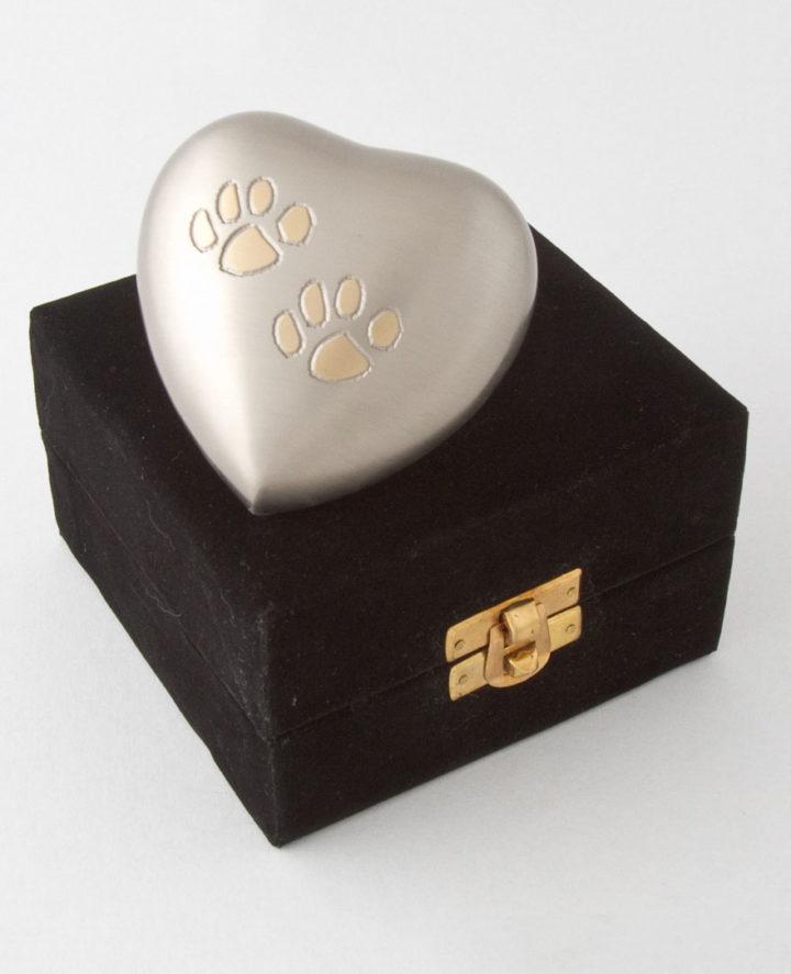 Cremation for Pets - Pet Urn - Far North Queensland